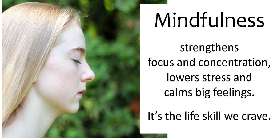 Mindful Teen